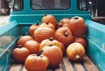 It's all about Fall / Beautiful home decor for the most beautiful season of the year!