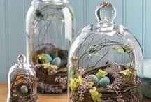 Easter: Cloche/Bell Jars/Hurricanes