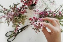 Bloom. / Fresh Flowers, Blooms, Florist Type Inspiration & Leafy Greenery.