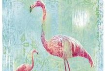 Flamingo Fever / Flamingo's in all shapes, forms and fashions