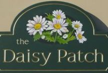 daisy patch / by marlies johnston
