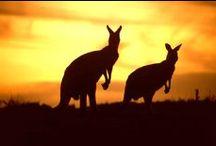 Australia! We love this country.