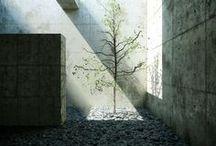 ARC_Udvar/Courtyard