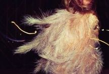 FeathersRuffles&Tulle