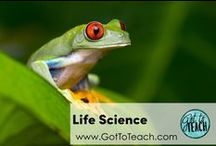Life Science / Science teaching resources related to environments, animal adaptations, and life cycles (general life science).