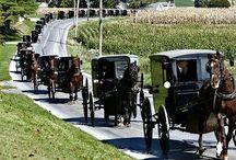 Amish / by Gloria Warner