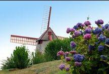 The Old Mill / #meetmeatthehub