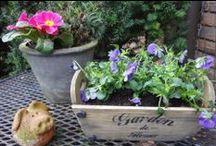 Garden  balcony garden sheds flowers / by Fine from Germany