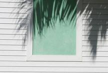 Color Style | Mint,Hemlock