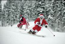 White Christmas in Arosa / Celebrating twenty years of winter snow - our food, our guests, our chalets, our Christmas!