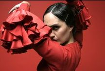 Flamenco / Flamenco is not just an art form, it is a way of life. / by Jeanne Dowd