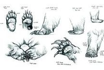 Creature Anatomy | Paws / Enjoy a selection of illustrations, sketches, model sheets and tutorials by various artists, collected by Character Design References™ and shown here for educational and inspirational purposes only. Every artwork remain the property of the respective © copyright holders, should inclusion of specific work offend any of you in some way, please contact us on → characterdesignreferences.com