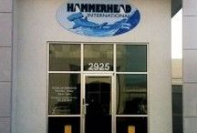 Non-Illum. Building Signs / If you need any assistance with building signage, then be sure to get in touch with us at 702.873.4463 or 714.998.8411 We look forward to working with you!