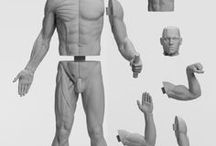 Anatomy Reference Figures / A collection of affordable anatomy reference figures for traditional and digital artists alike. Click on any of the pictures below to be redirect to the shop and learn more about these figures.