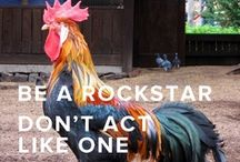 Be a Rockstar, Don't Act Like One