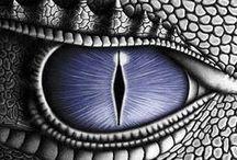 dragones / by Luis Quique Flores