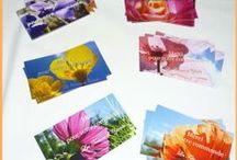 Les cartes de remerciement de Céline Photos Art Nature