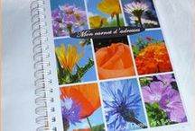 Les carnets d'adresses de Céline Photos Art Nature