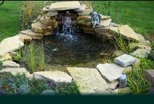 DIY Ponds & Water Gardens / Endless ideas and possibilities await when you are looking to create your one of a kind pond or water garden