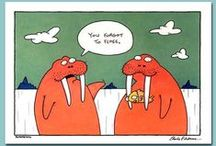Dental Humor / There is a funny side to dentistry. We know going to the dentist isn't necessarily fun... But it can be!
