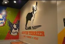 Pet Inspired Workspaces / Ideas and inspiration for creating a fun, happy pet-loving workspace. / by Off-Leash Art™