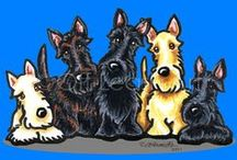 Dogs : Scottish Terriers / Love Scotties! / by Off-Leash Art™