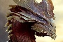 dragon creatures