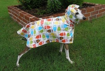Rain Slickers for dogs