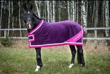 Your HOTTY stripes / Let's dress your HORSE - new You&Your HORSE clothes collection