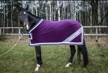 Your VELVET stripes  / Let's dress your HORSE - new You&Your HORSE clothes collection