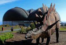 Museo del Jurásico de Asturias / Disfruta del Museo más visitado de Asturias