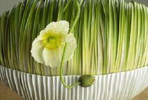 Flower art / Ikebana