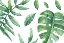 Art, Textures, Patterns & Illustrations