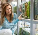 Beginner Fish Tanks / Beginner Fish Tanks | Fish aquarium review site helping beginner fish hobbyists choose the best aquariums • Tropical, marine & custom made fish tanks | WhichFishTank.com