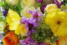 ~To gather... / Cut blooms, assembled in perfect harmony of texture, color and delicacy...