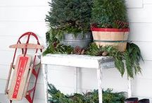 Winter Decor / Winter and Christmas inspirations.
