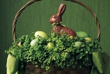 Hoppy Easter, Bunny! / by Allyson Tappan