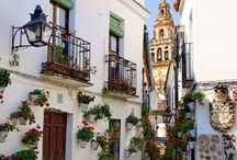 """Cordoba, Spain """"Cordoba May Patio Festival""""  / Every May Cordoba, Spain has a festival and gives prizes to the best flower decorated patios.. Spellbound Flowers encourages this tradition and will be celebrating this festival in our own ways; come May."""