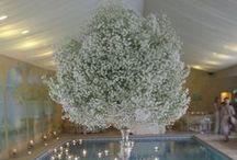 Beautiful 'Baby's Breath' Wedding Florals / Beautiful baby's breath wedding florals theme….
