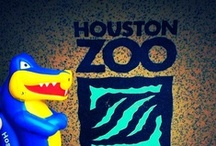Snappy Visits the ZOO / Snappy took a trip to the Houston Zoo. Follow along on his search for his fellow gators! / by HostGator