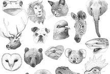 sketch / animal