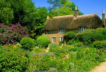 Places from film, art and literature in and around Shaftesbury / Thomas Hardy in Dorset, Jane Austin in Bath and Lyme Regis, Ian McEwan on Chesil Beach, the area has inspired authors for centuries. In addition, there are many places used in films, as well as landscapes for painting.