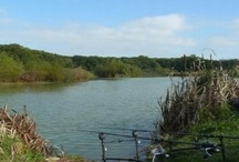 Places to fish / We have an abundance of ponds and rivers in and around Shaftesbury.  Here are some places where you can fish.  Please contact them for permission.  Before you start you will require a fishing licence.  Please read info from the environmental agency.  http://www.environment-agency.gov.uk/homeandleisure/recreation/fishing/31485.aspx