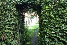 Flemmings sommerhus  / Haven i sommerhuset