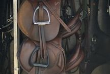 Equine Gear / by Time To Ride