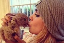Celebrities With Pets / Come see what pets the celebs flaunt!