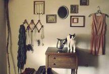 Mit Katzen wohnen