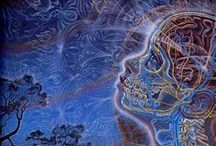 "Alex Grey (art) / ""Pointing to those subtle and casual dimensions beyond the physical is part of the purpose of my work. Interweaving the dimensions together - physical, emotional, conceptual, psychic, subtle, and spiritual has been part of my intention, my mission of art, always with the hope that it resonates with people and affirms their own deeper understanding of themselves and the world."" ~Alex Grey"