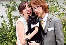 getting meowied / cat accessories for your wedding day, engagement photos + newlywed life