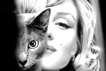 celeb cat ladies and gents / star struck. we love that these celebrity cat lovers love kitties.